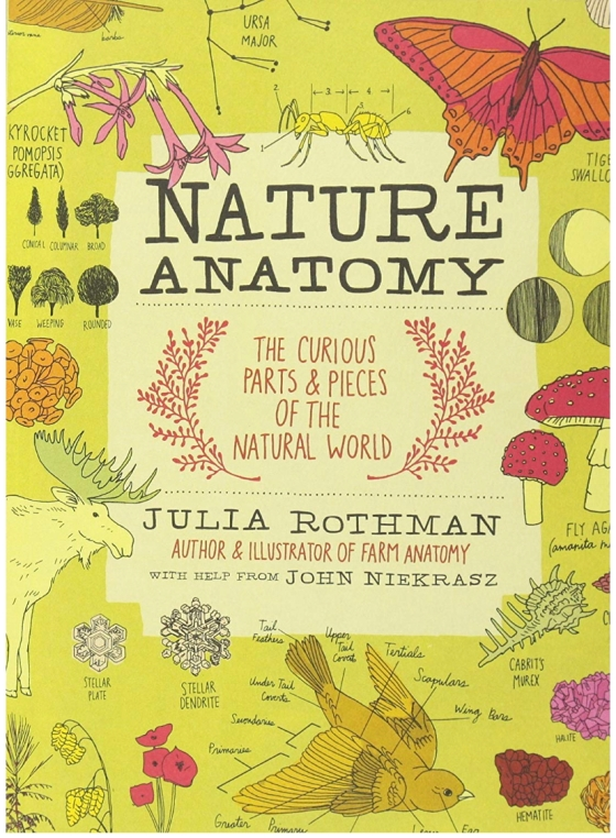 Nature Anatomy