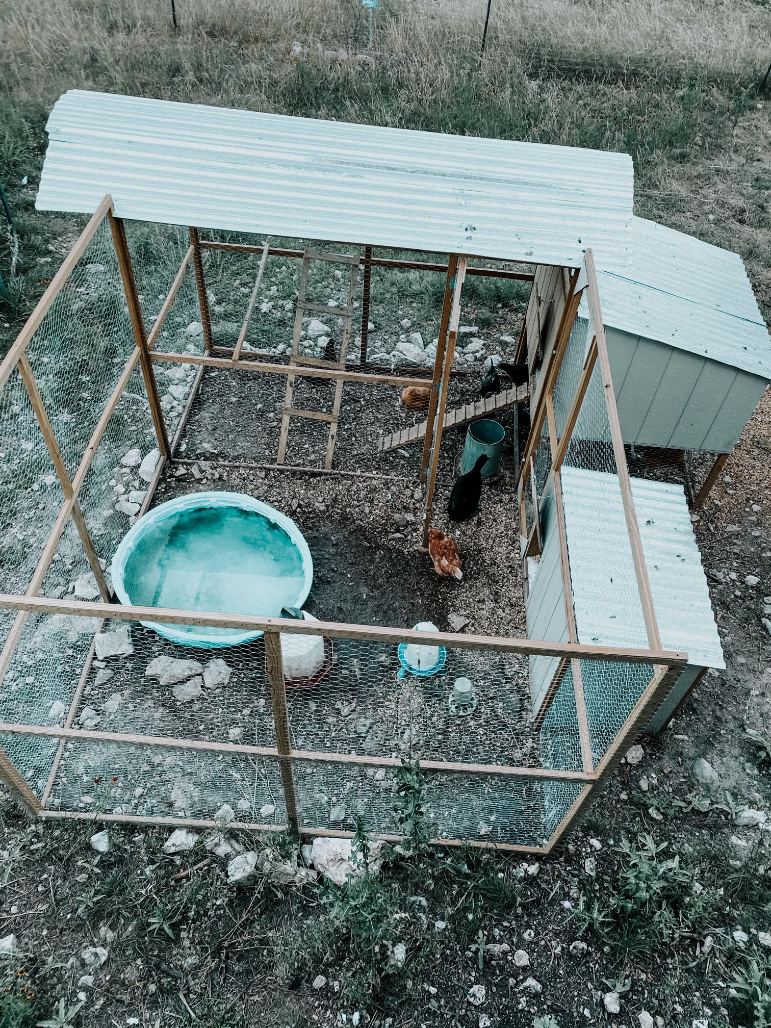 Chicken and duck coop and pin